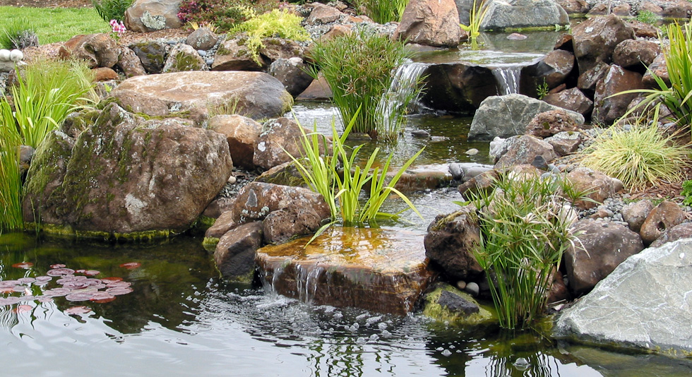 pond magic ponds waterfalls water gardens landscaping santa