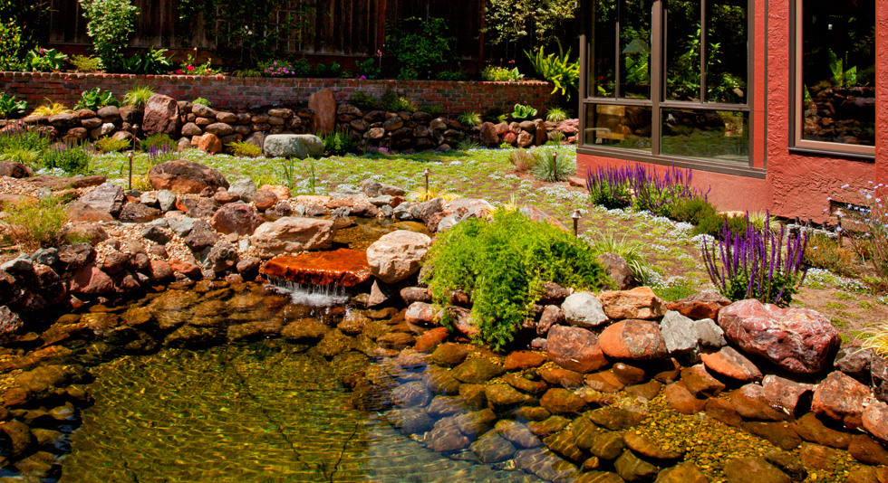 Pond Magic   Ponds, Waterfalls, Water Gardens, Landscaping, Santa Cruz,  Monterey, San Jose, San Francisco