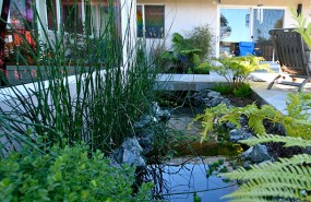 Landscaping-Los-Altos.