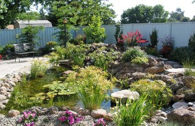 Landscaping-Pleasanton