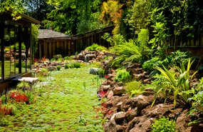 Landscaping-San-Jose