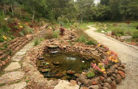 Landscaping-and-water-feature-Scotts-Valley.
