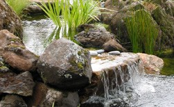 Wetland Systems Installation