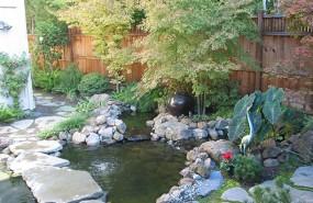 Los Gatos Koi Pond, Waterfall, Landscape Installation