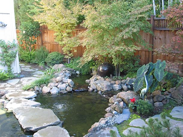 Los gatos koi pond waterfall landscape installation for Koi pool santa