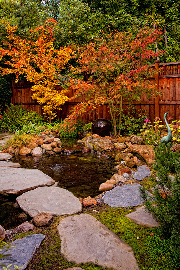 Los gatos koi pond waterfall landscape installation for Landscaping around koi pond