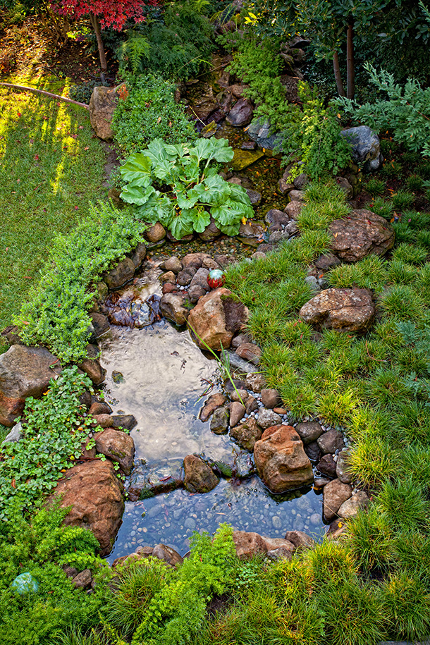 Los Gatos Koi Pond Waterfall Landscape Installation
