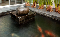 Koi Pond Installations
