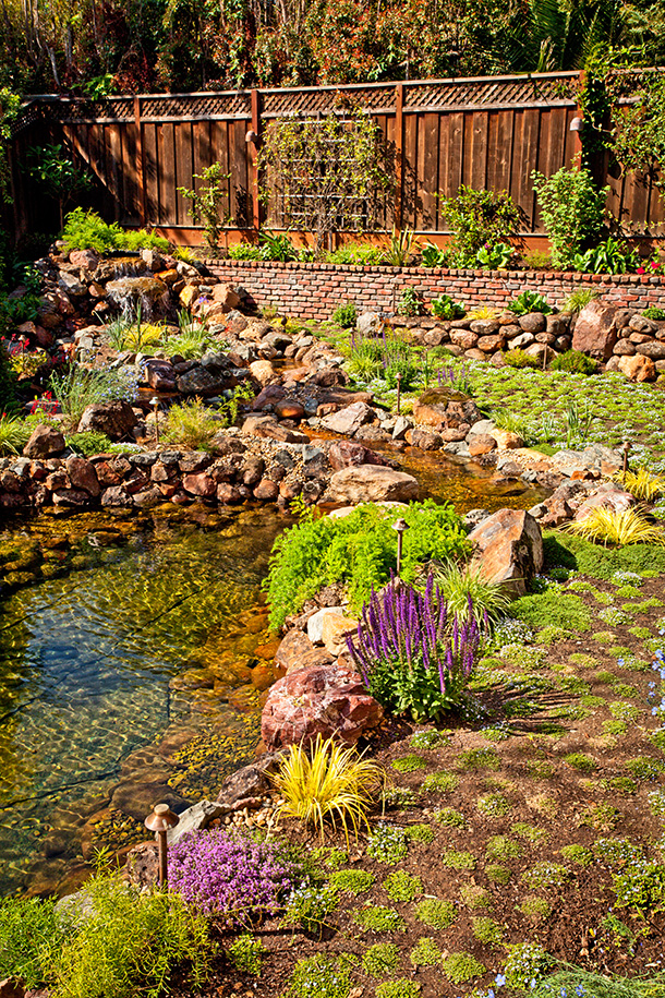 San Jose Large Landscape Installation with Koi Pond and Stream