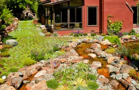 Pond Magic - Landscaping