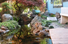 santa-cruz-pond-magic-landscaping-(6)