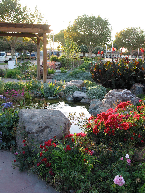 Pond and Landscape Display Tully Road San Jose