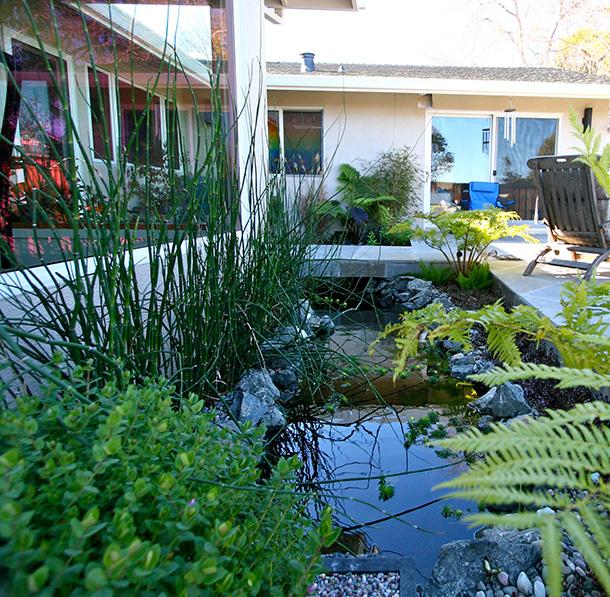 Sj Landscapes And Gardening Services: San Francisco, San Jose, Santa Cruz