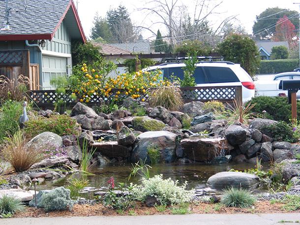 palo-alto-pond-magic-waterfall-(5) | Pond Magic - Custom ... on Front Yard Pond id=56532